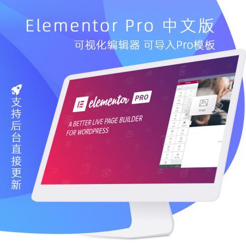 Elementor Pro v3.0.5 中文汉化版可视化编辑器导入摸板在线更新